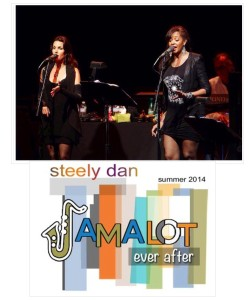 Steely Dan 2014 tour image
